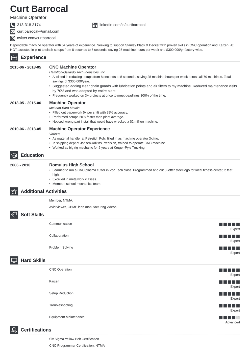 Professional Resume Template Iconic