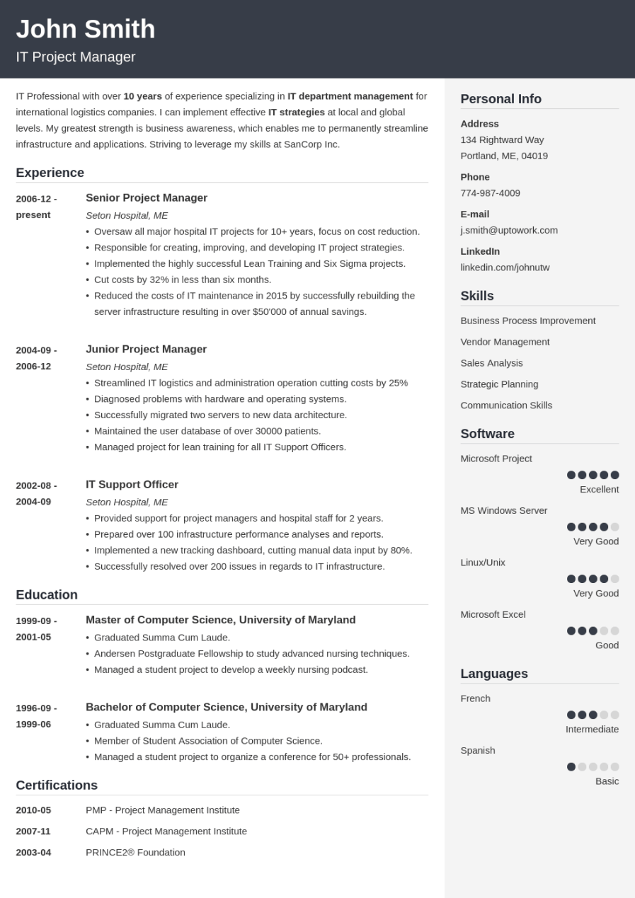 Professional Resume Template Cubic