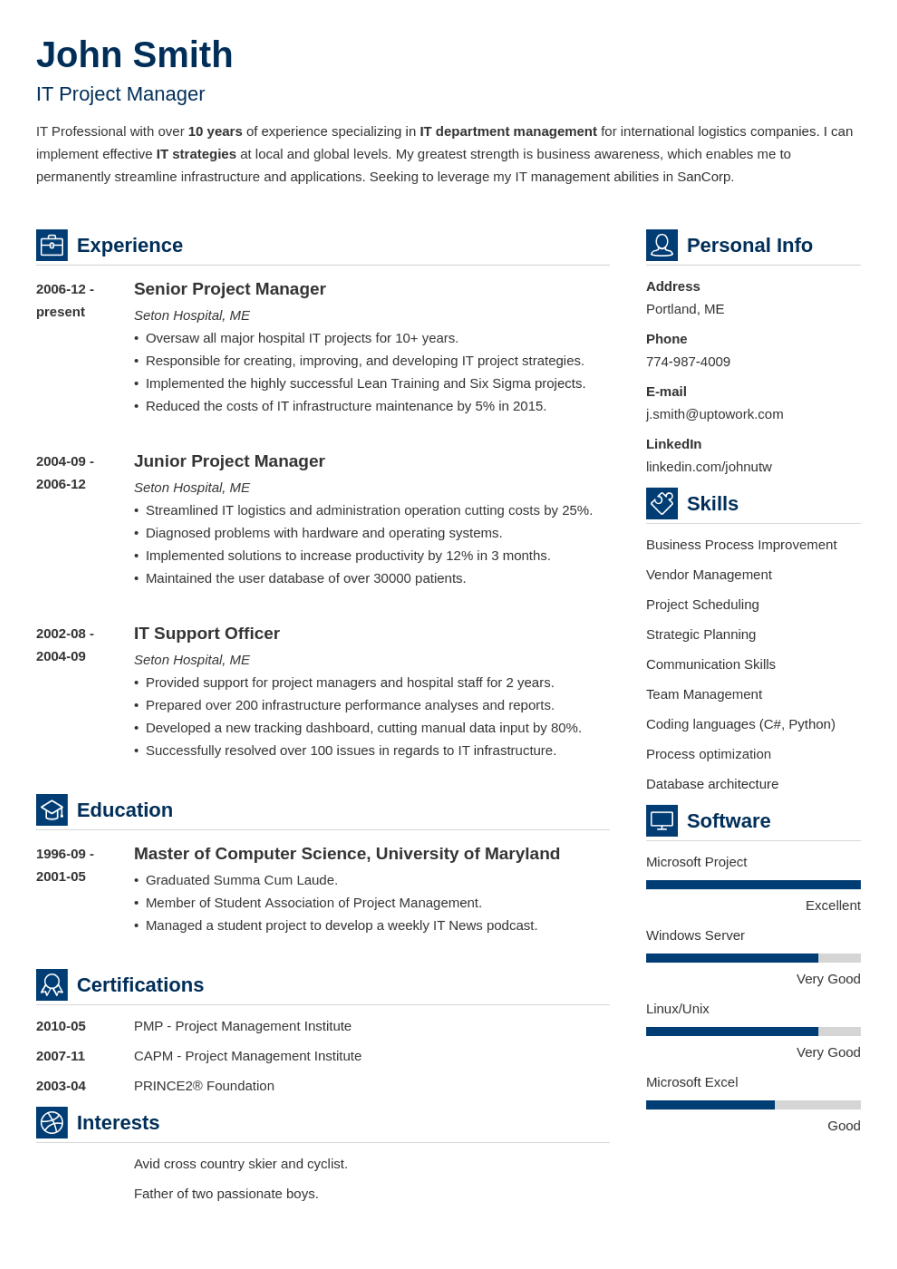 Professional Resume Template Vibes