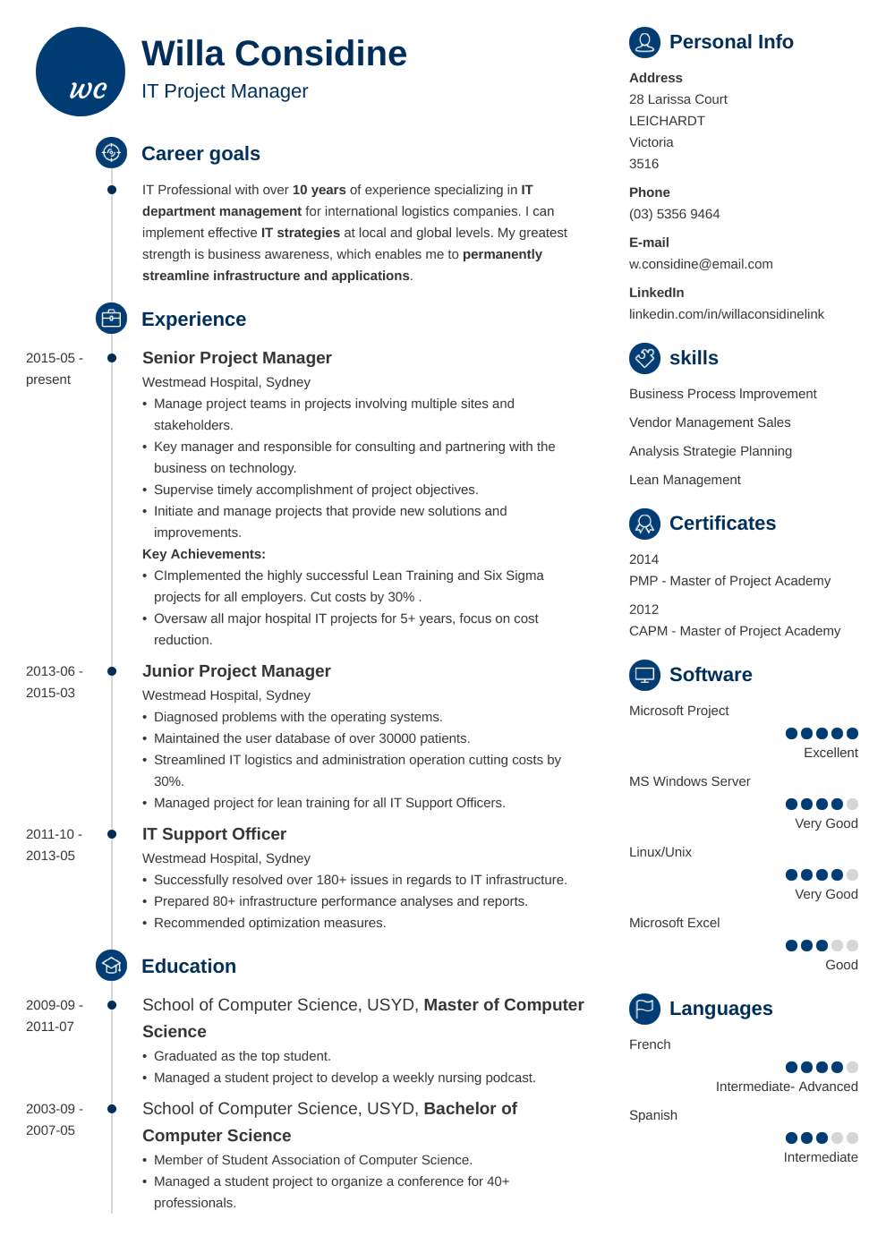 Professional resume made with primo template