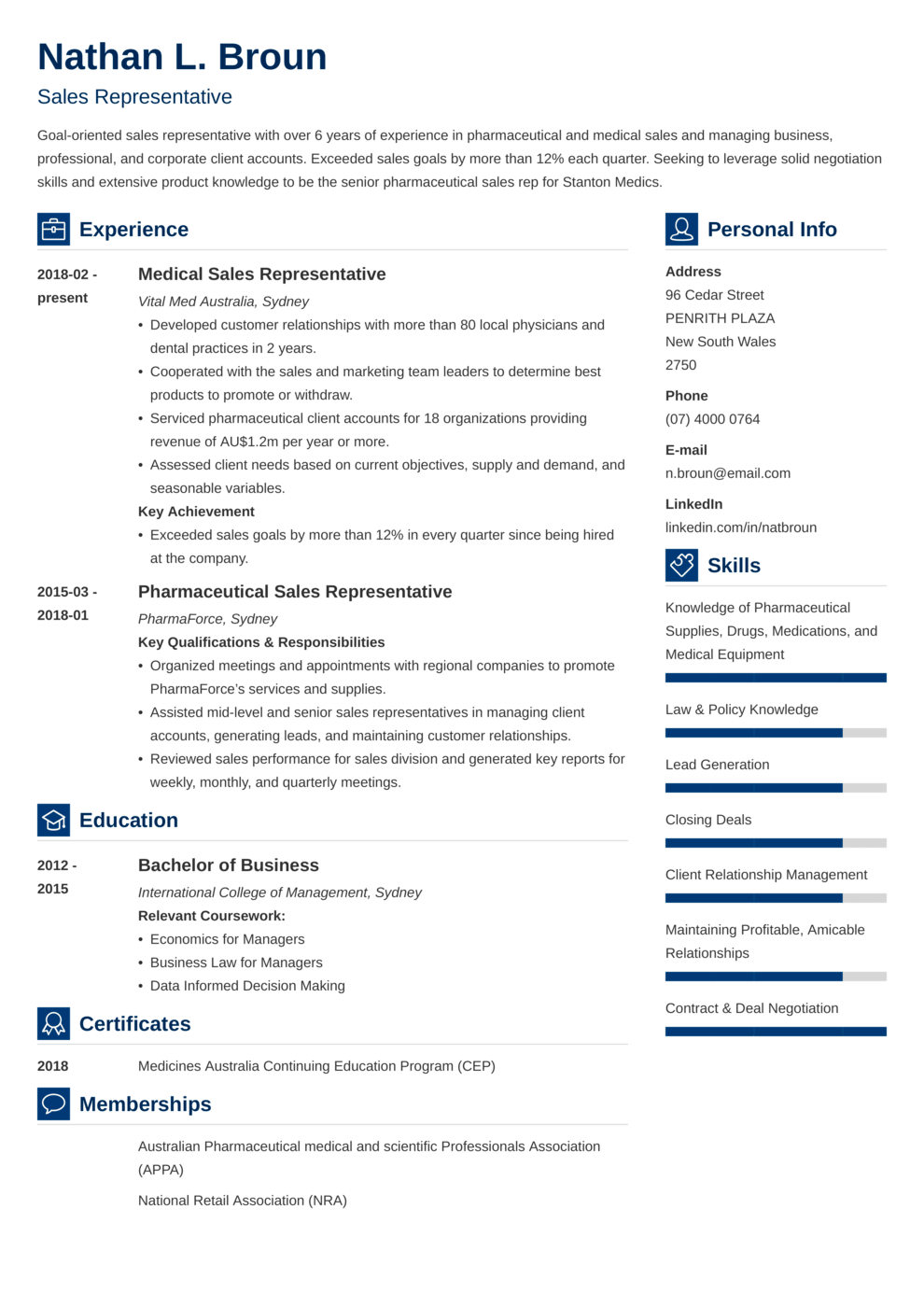 Zety's Vibes CV Template