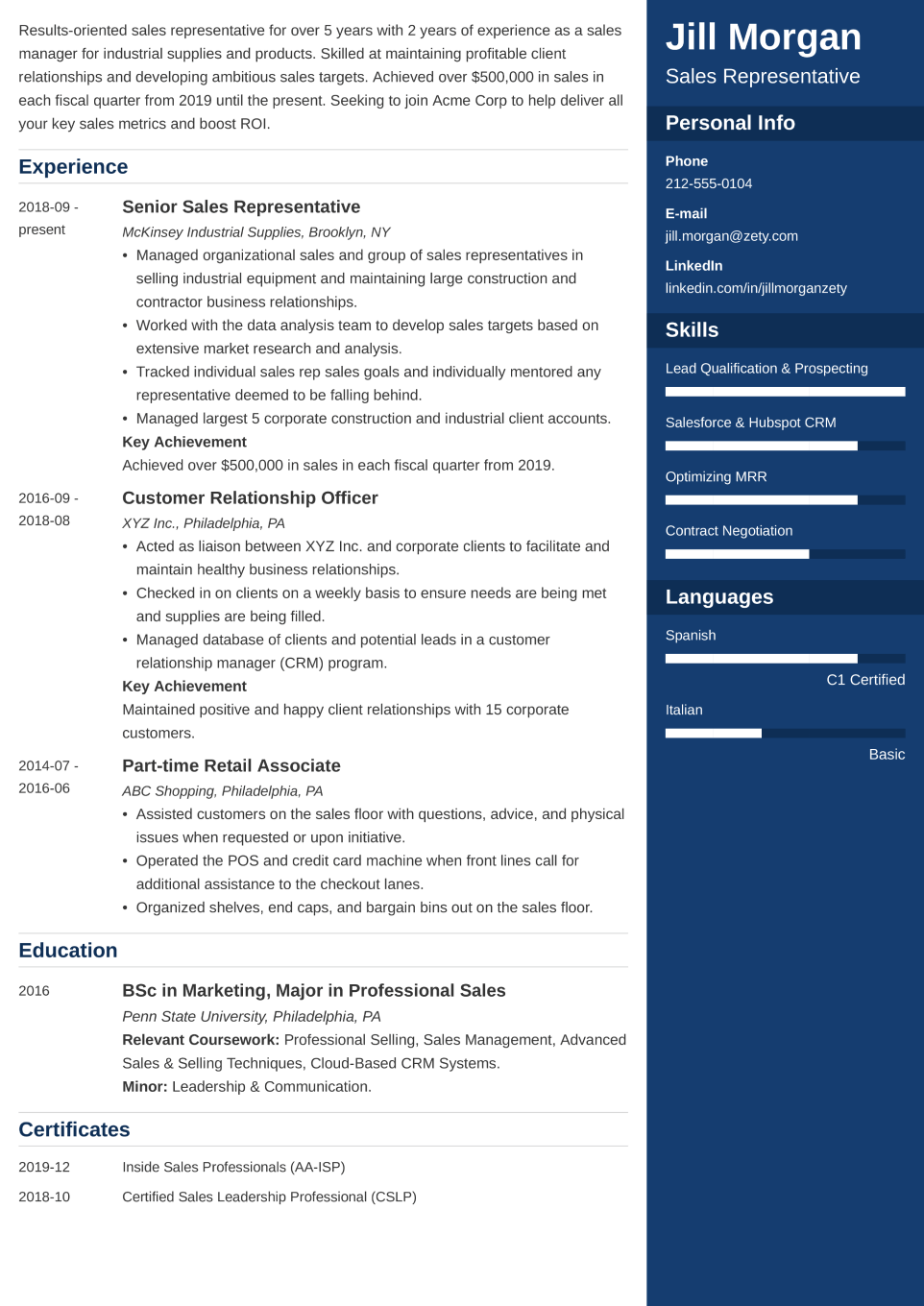 Professional CV Template Enfold