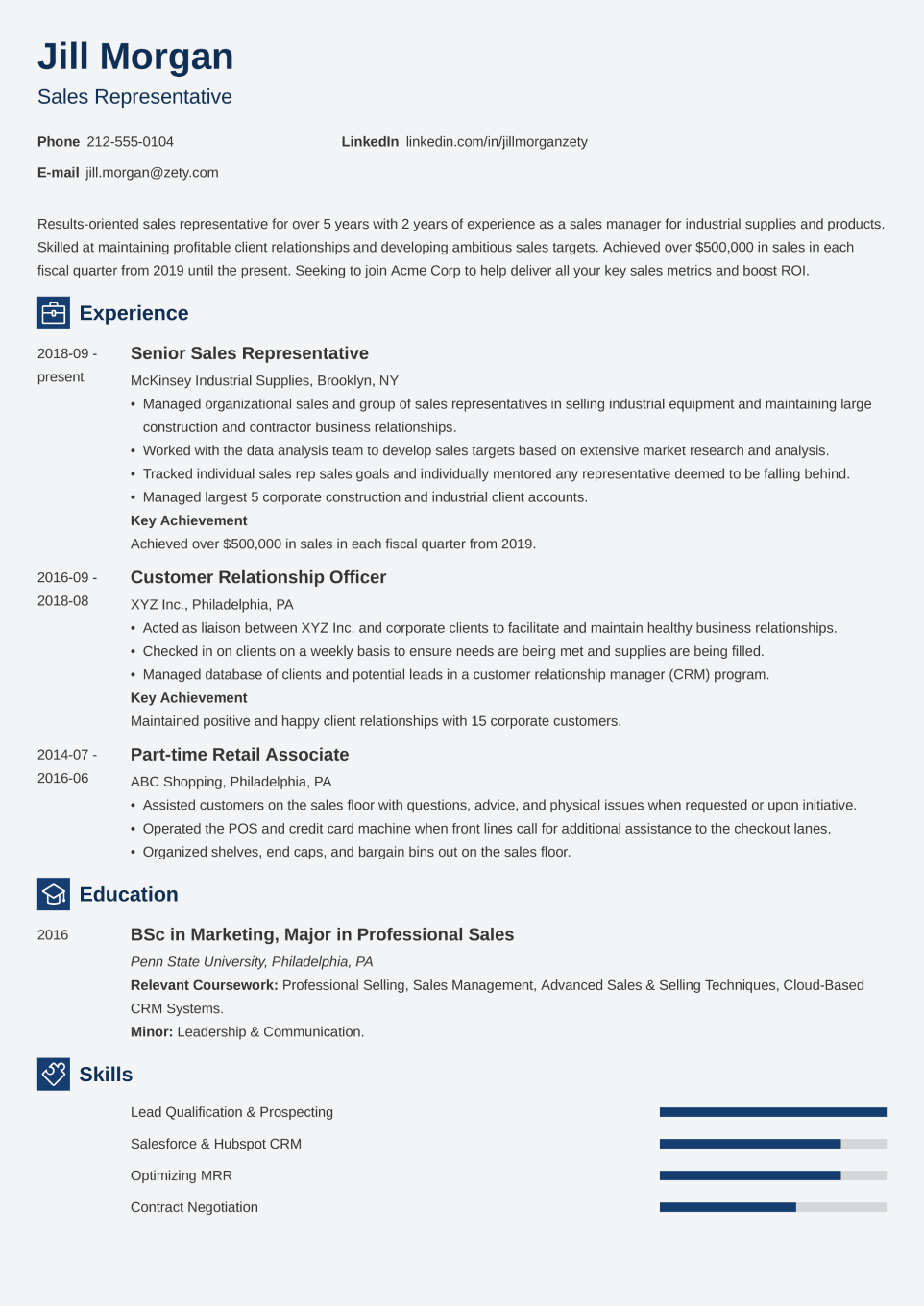 Professional CV Template Newcast