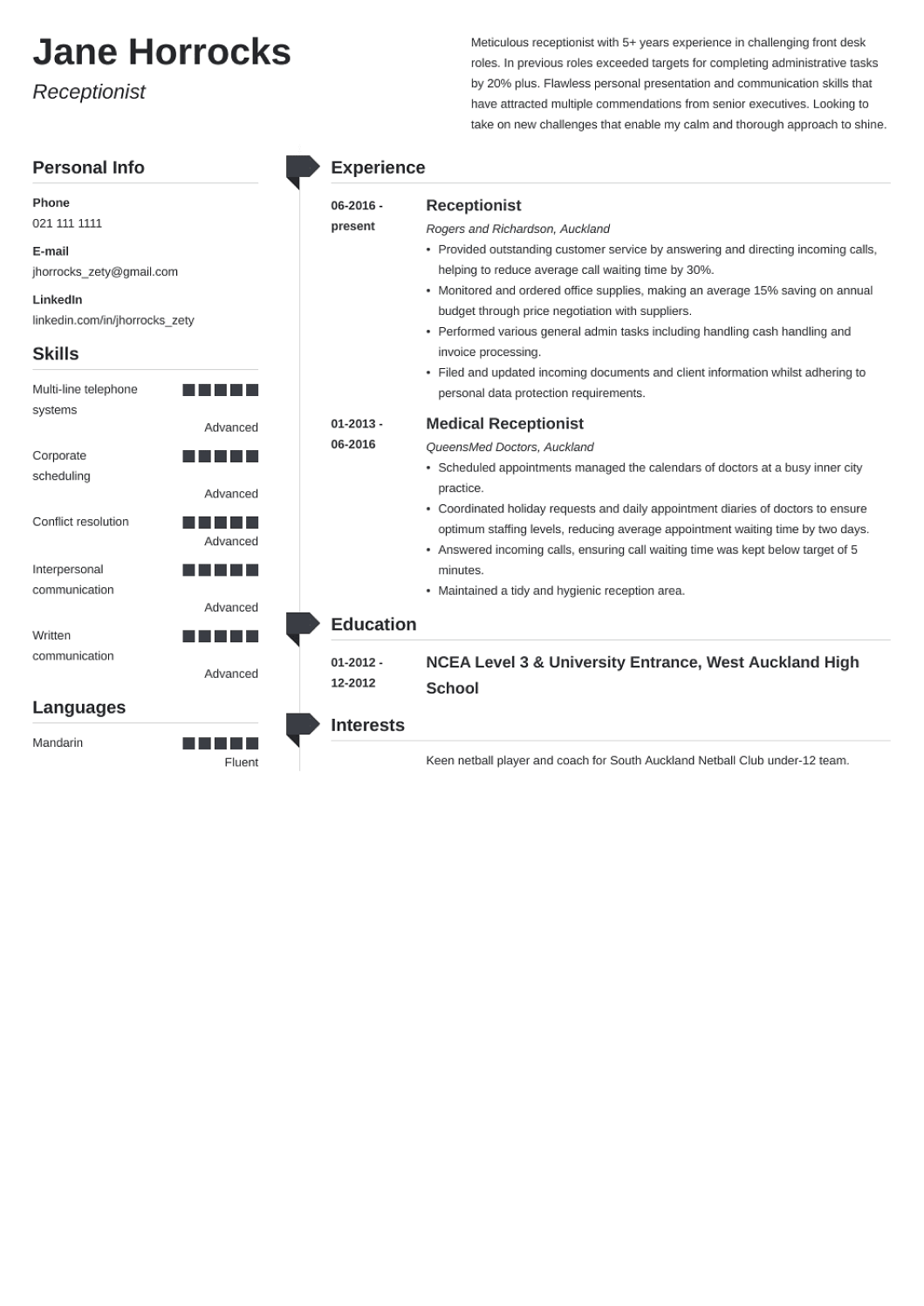 Professional CV Template Muse