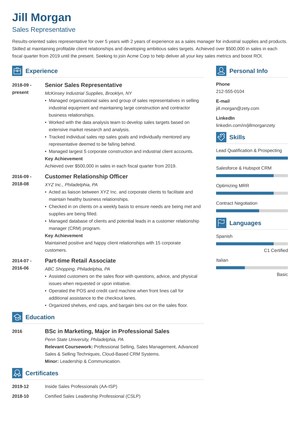 Professional CV Template Vibes