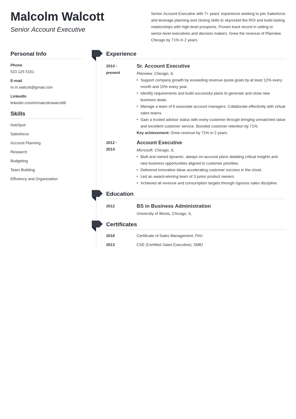 account executive resume example template muse