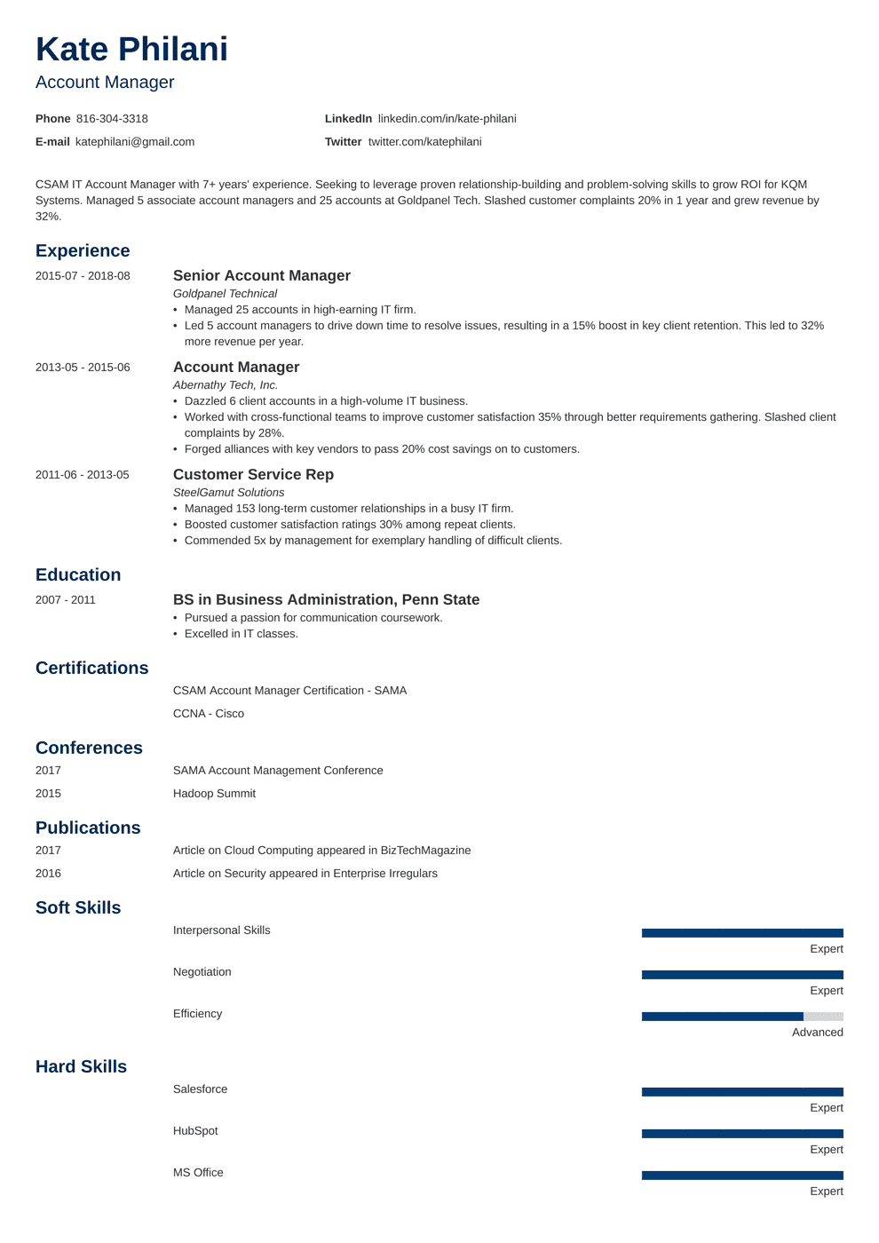 it account manager resume