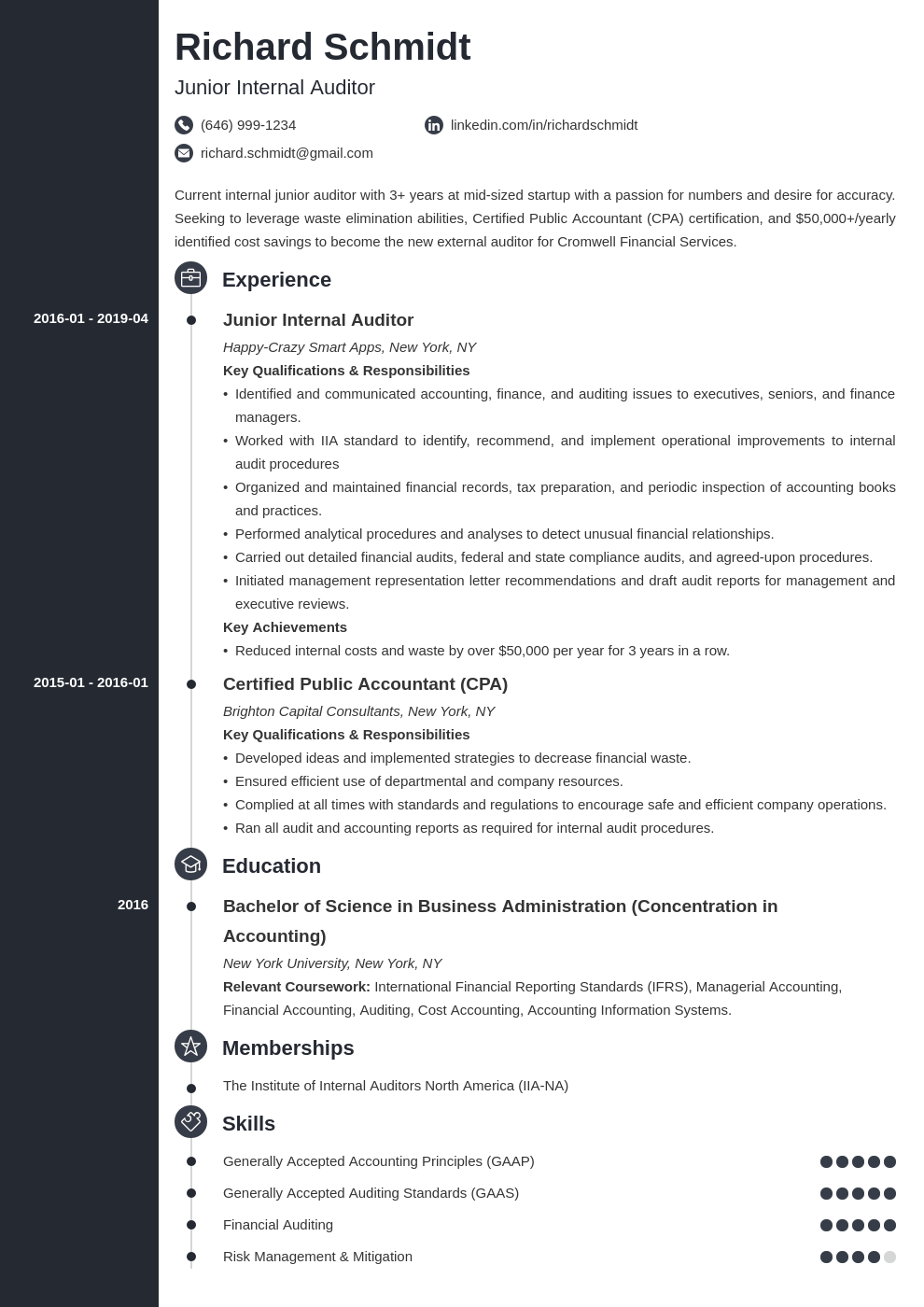 auditor resume example template concept