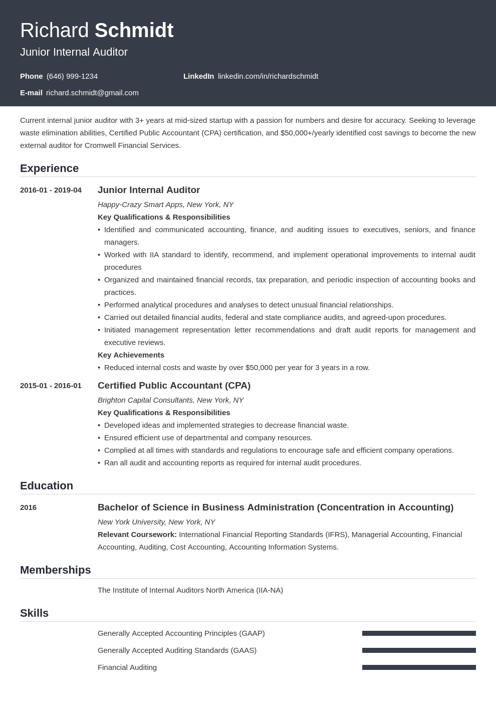 auditor resume example template influx
