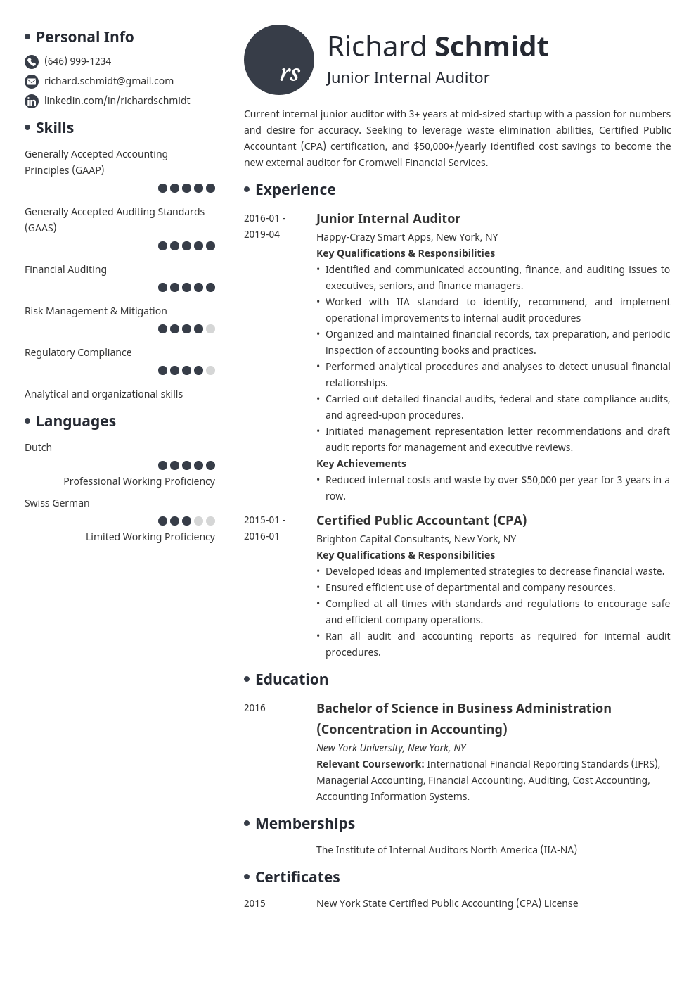 auditor resume example template initials
