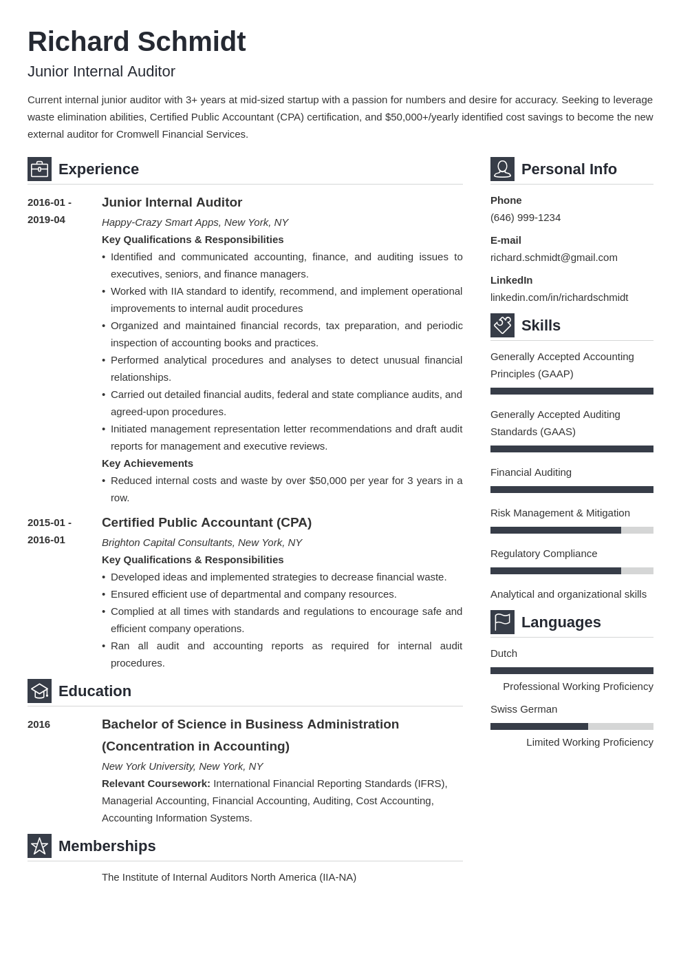 auditor resume example template vibes
