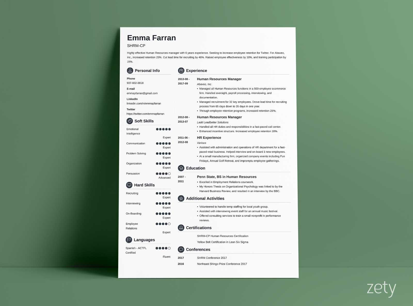 basic sample resume with round section icons