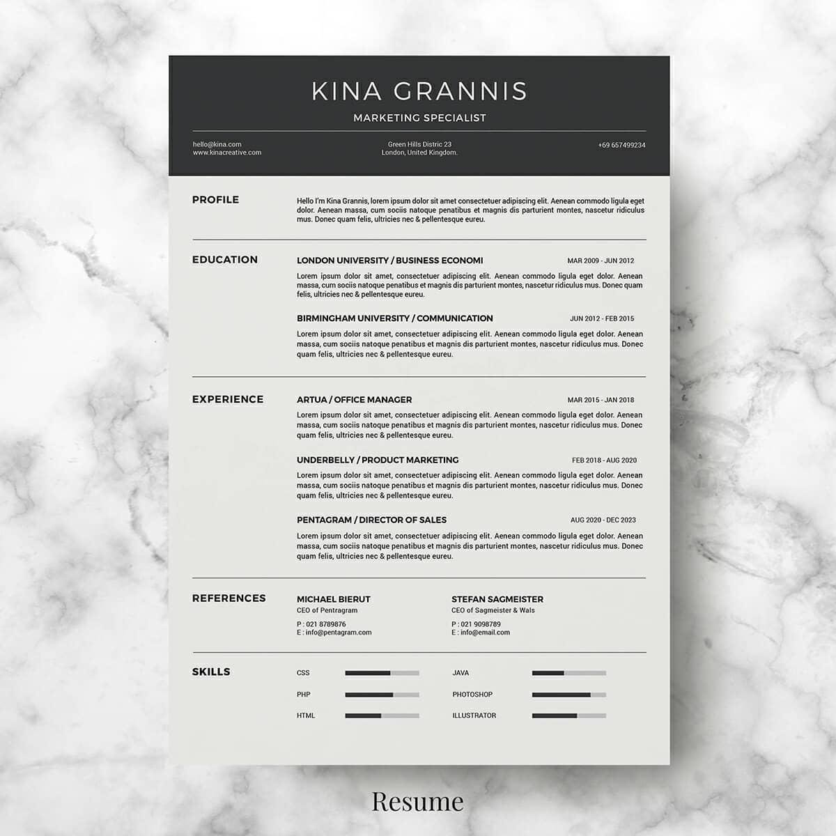 Basic Resume Format With Grey Header