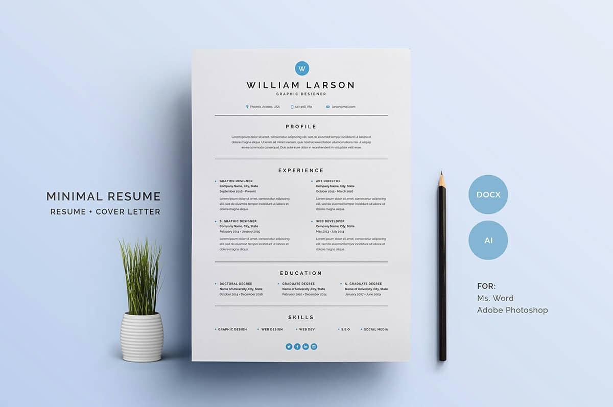 Sample Basic Resume With Blue Elements  Example Of Simple Resume