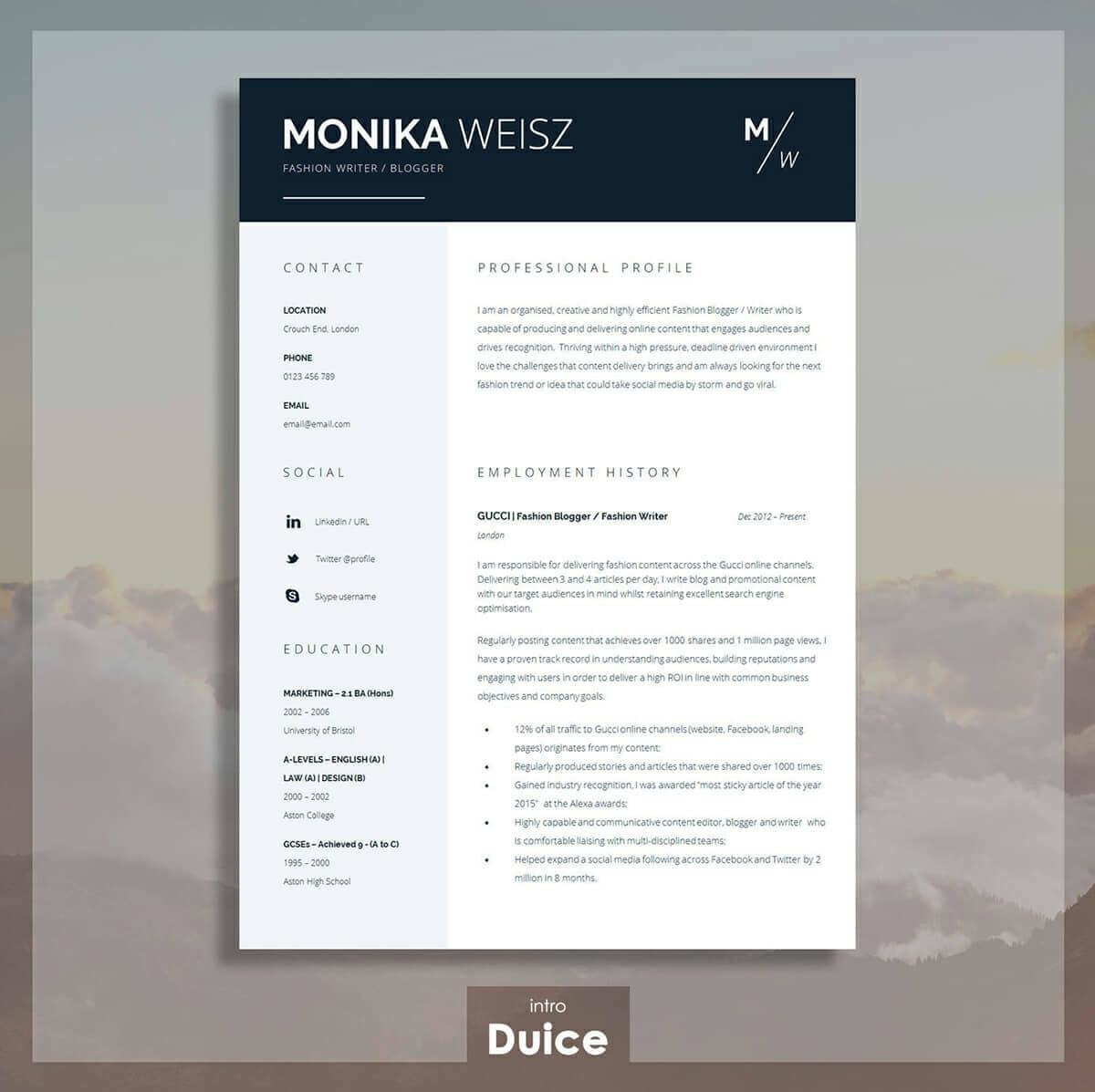 Best Microsoft Word Resume Template With Columns  Best Word Resume Template