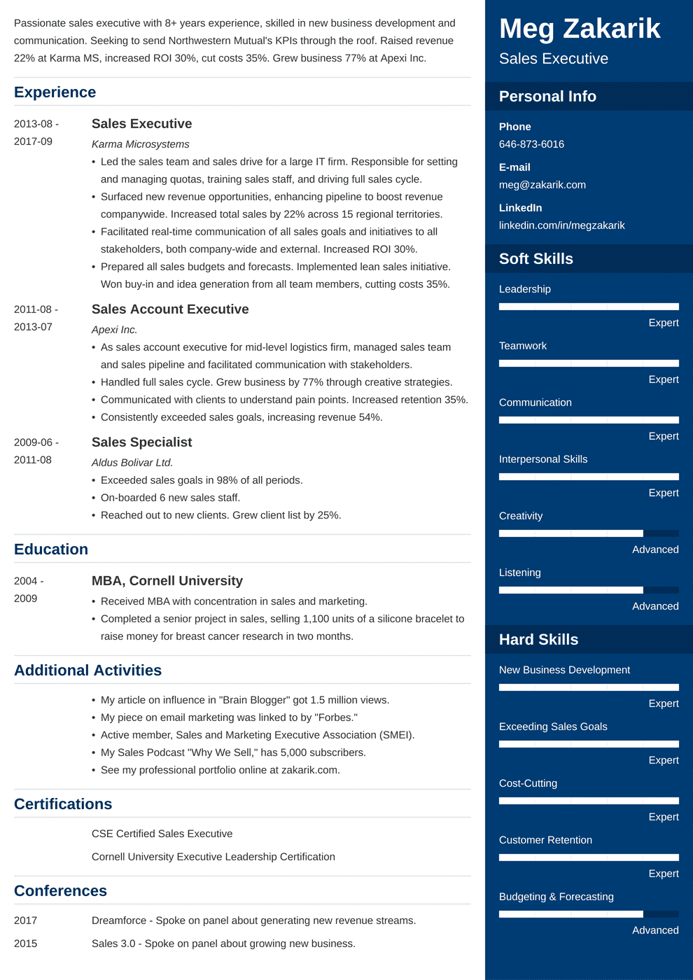 business resume template 20 professional examples