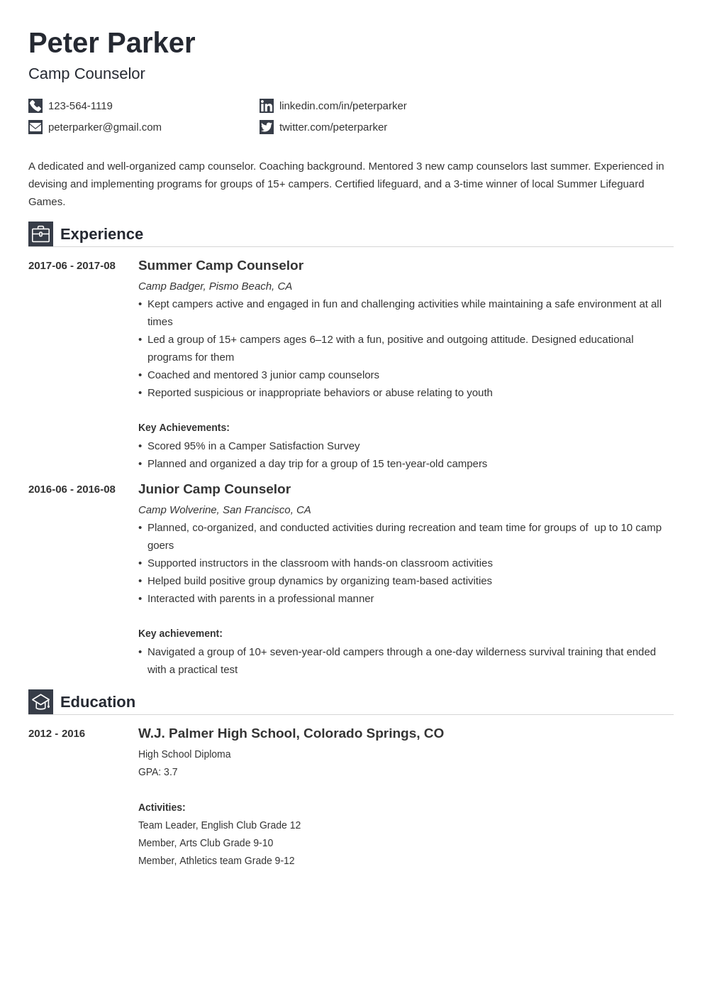 camp counselor resume example template iconic