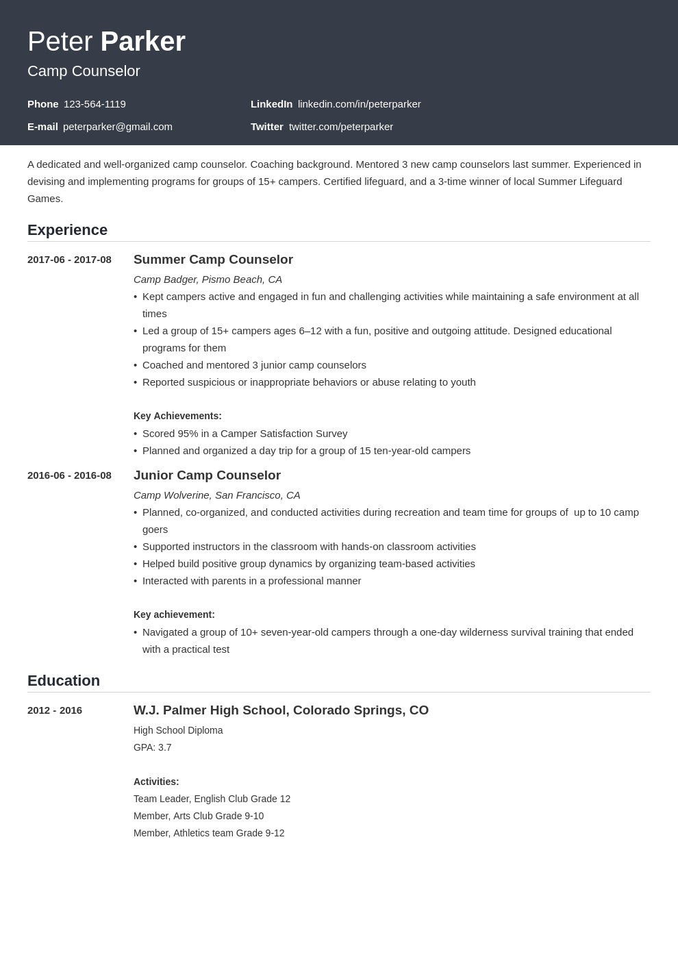 camp counselor resume example template influx