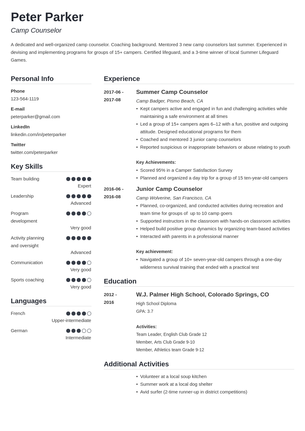 camp counselor resume example template simple