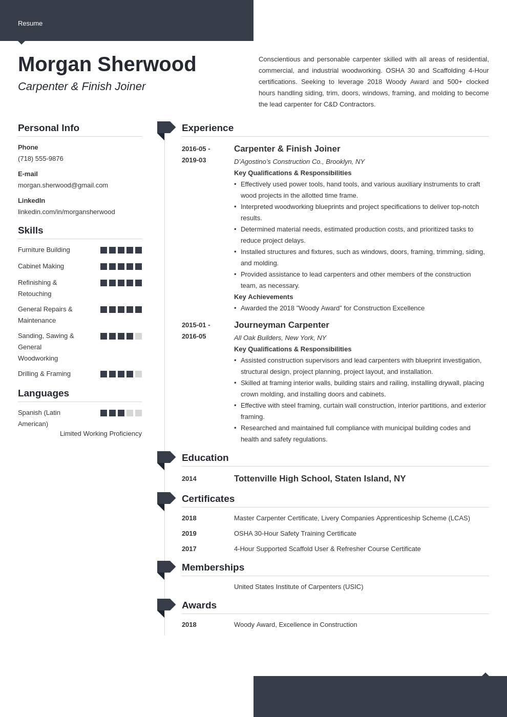 carpenter resume example template modern