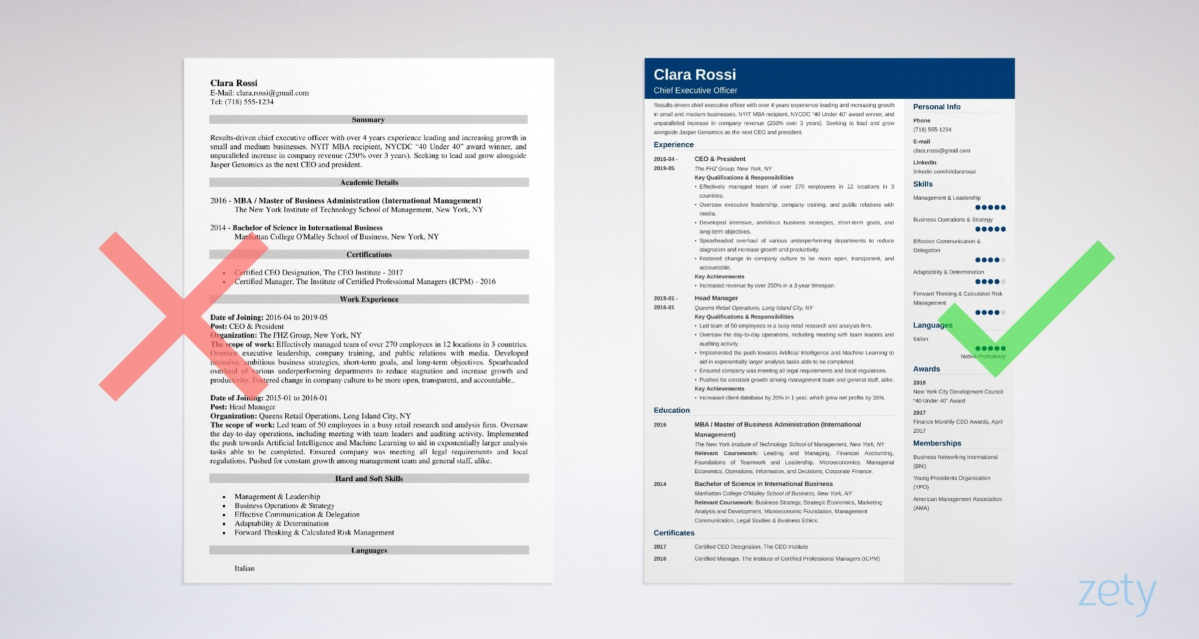 Ceo Resume Example Full Writing Guide 20 Tips