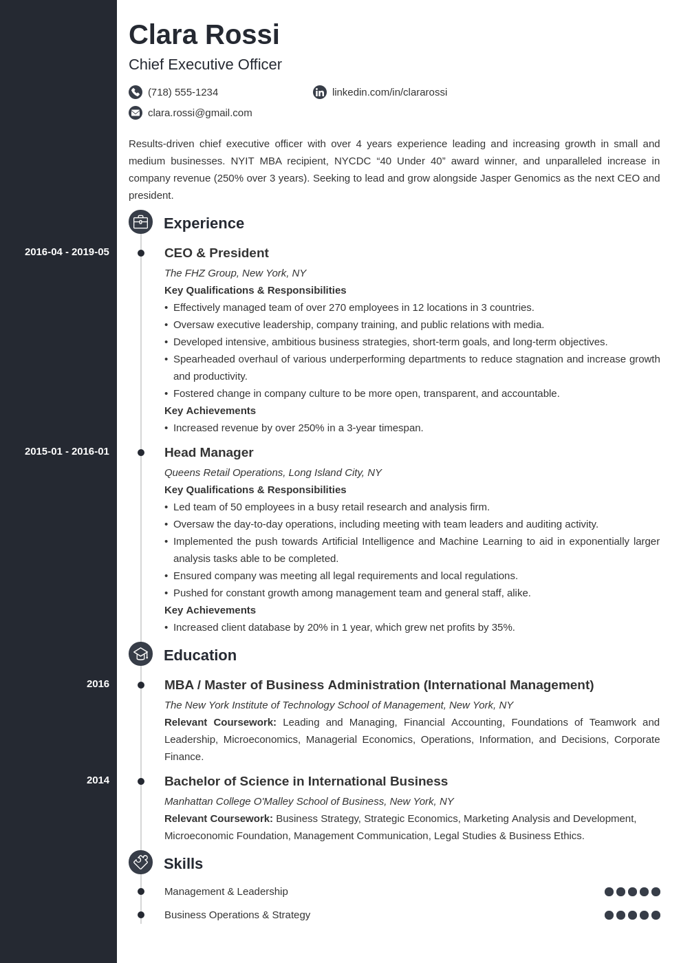 ceo resume example template concept