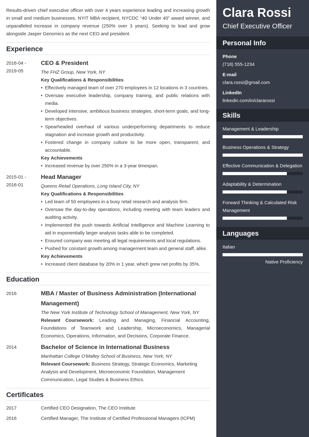 ceo resume example template enfold