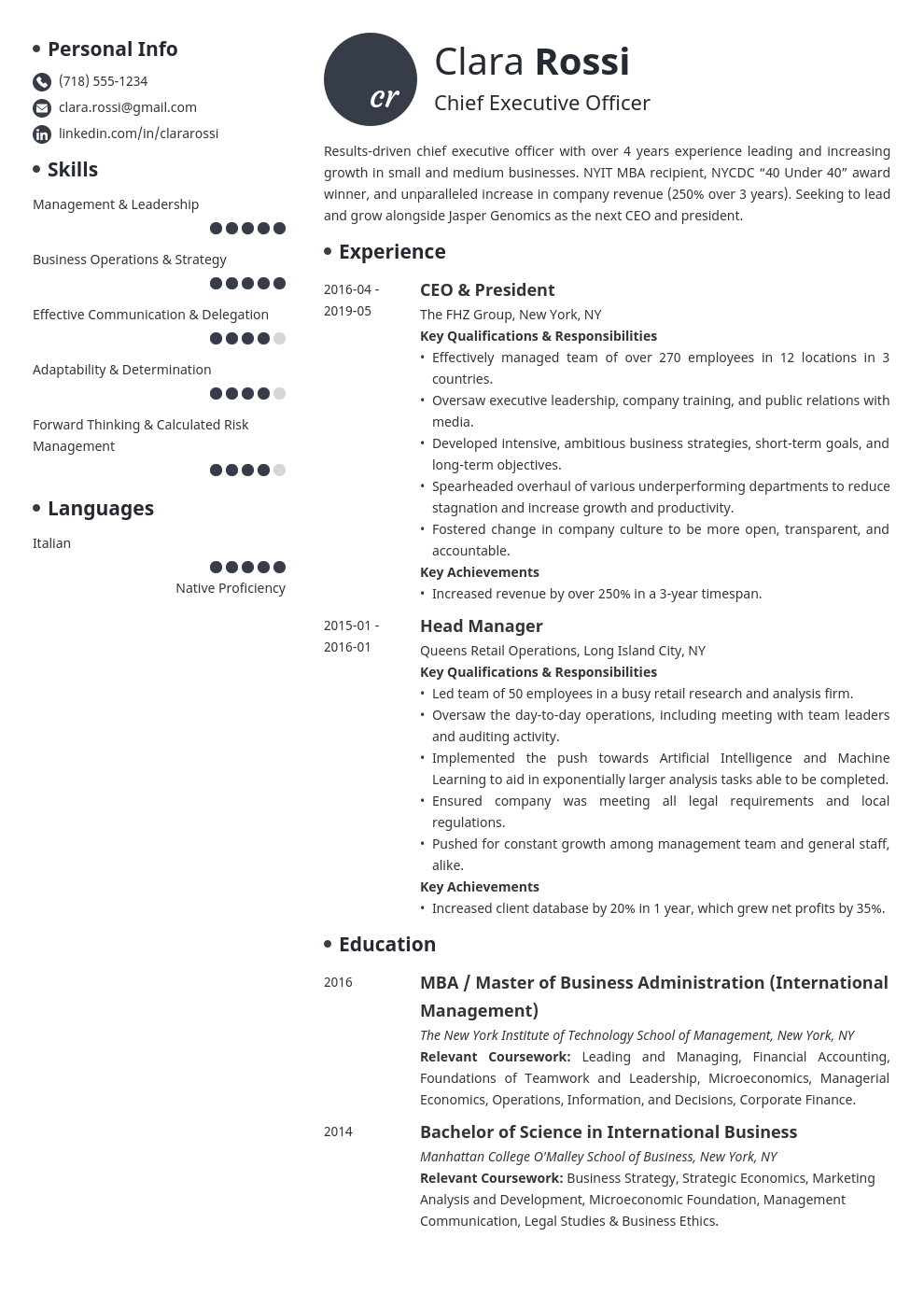ceo resume example template initials
