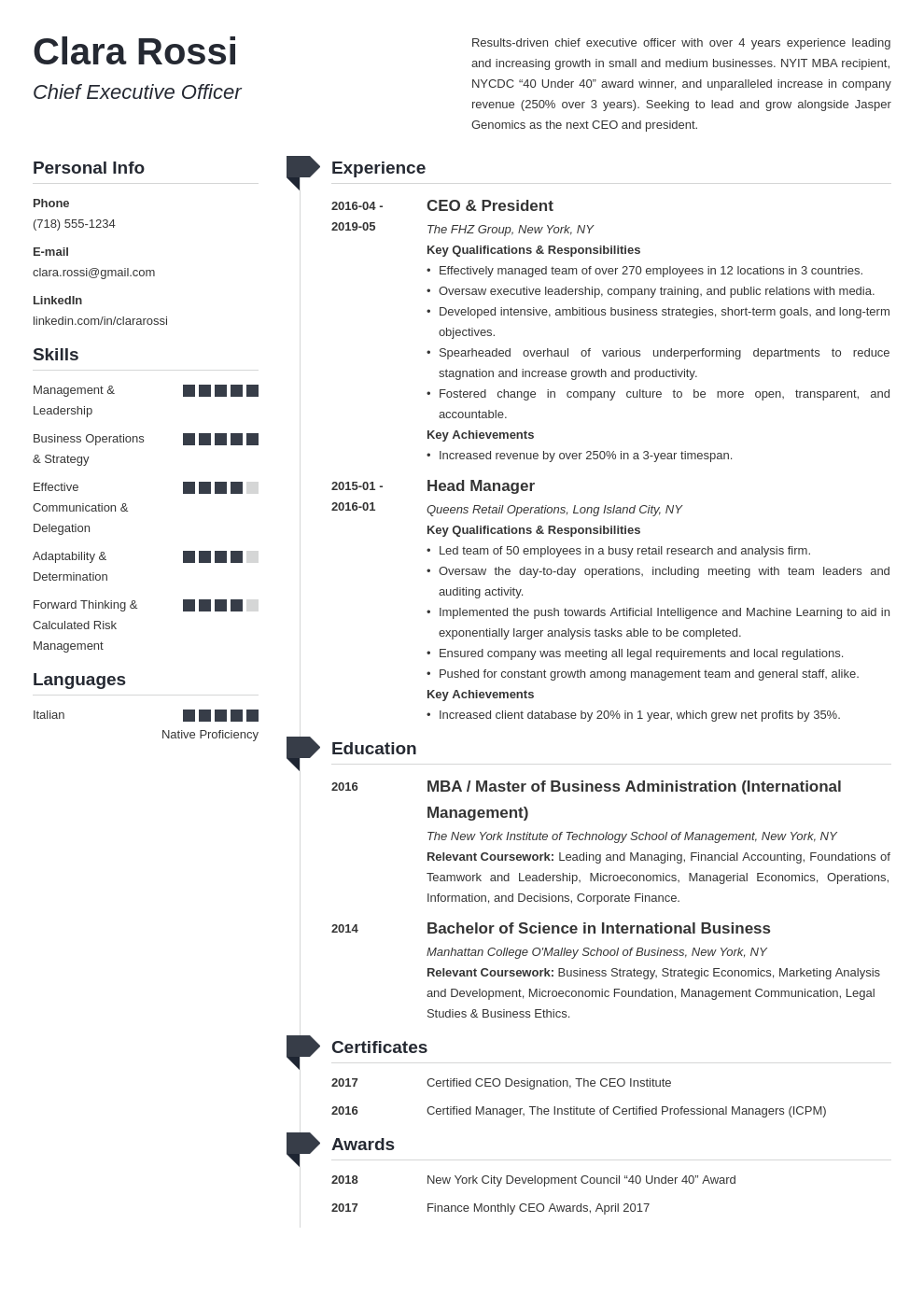 ceo resume example template muse