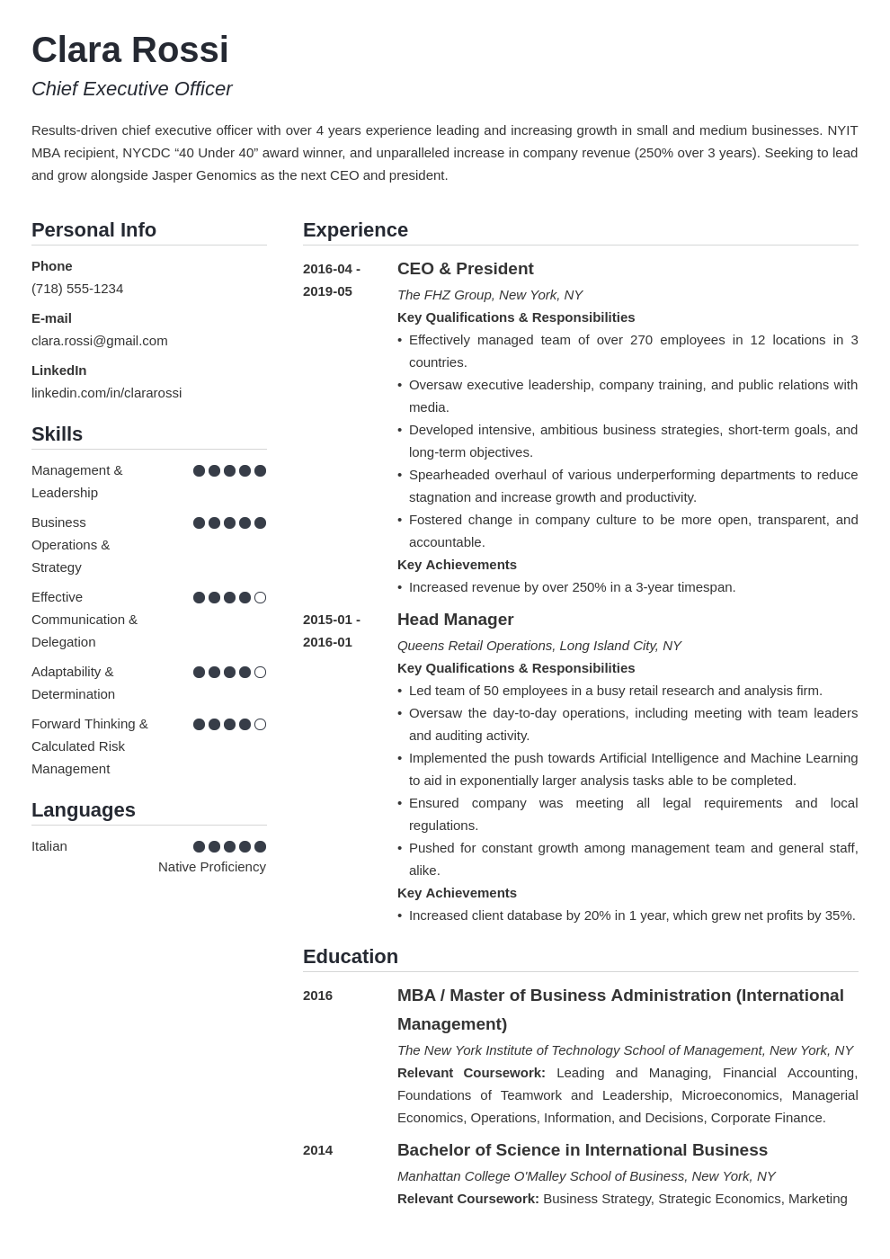ceo resume example template simple
