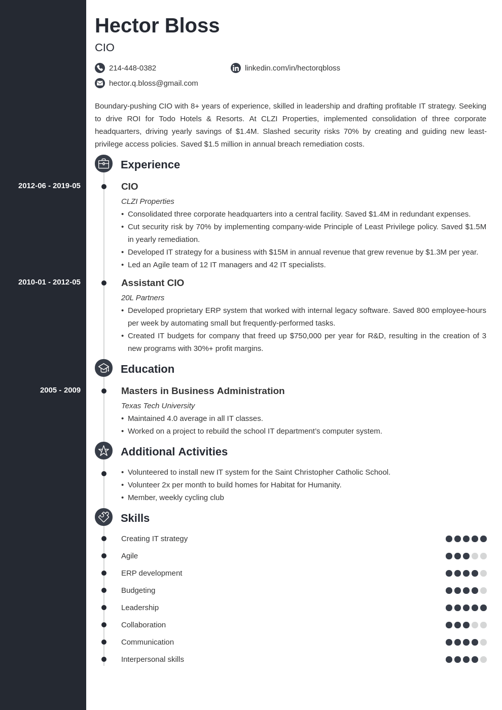 cio resume example template concept