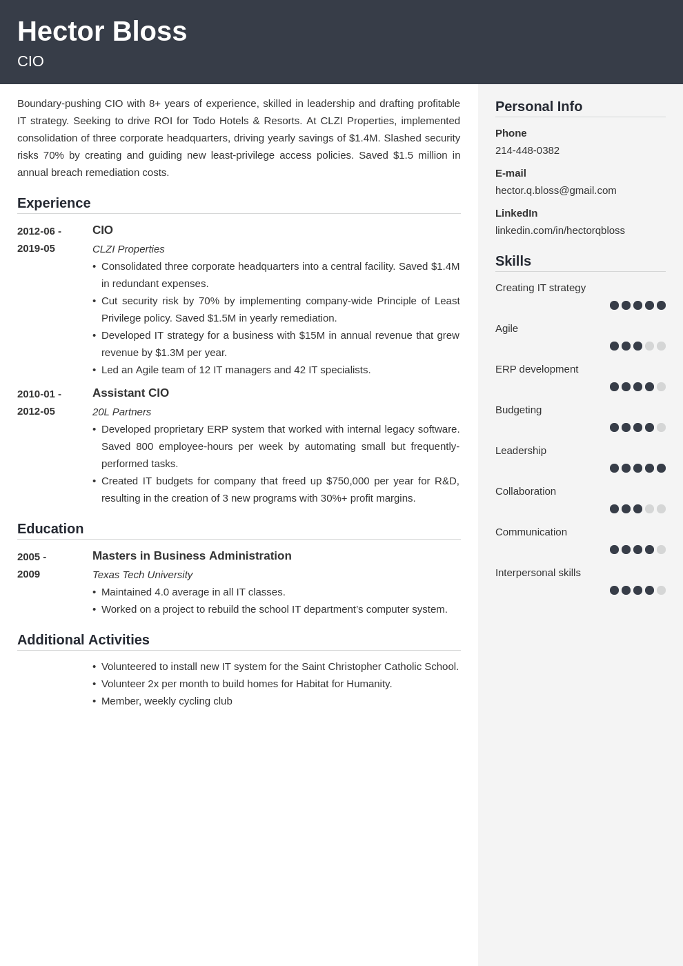 cio resume example template cubic