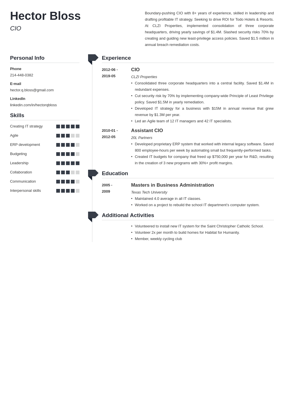 cio resume example template muse
