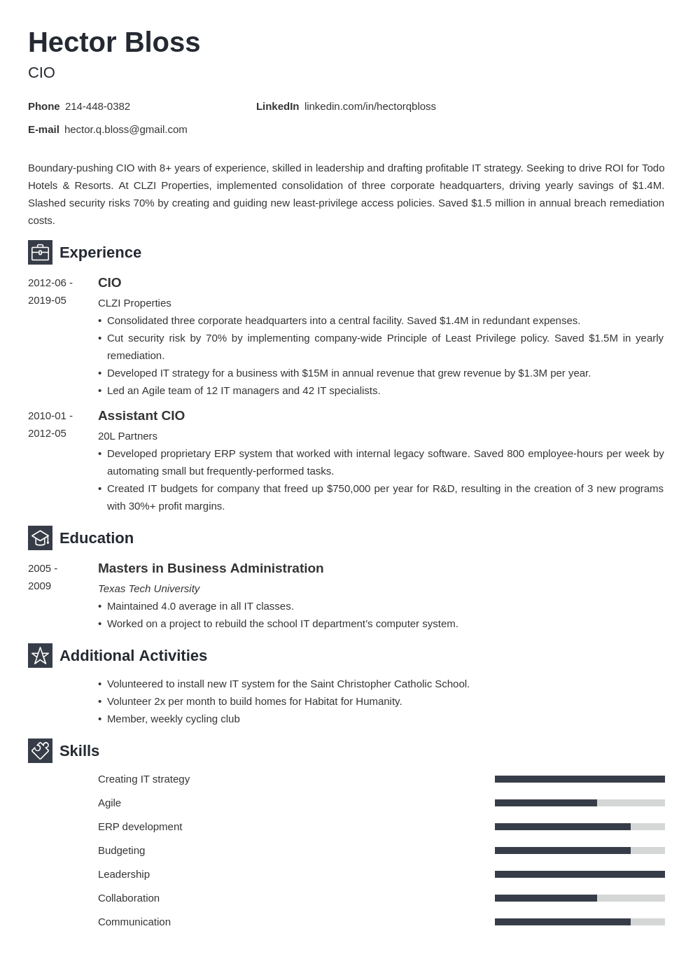 cio resume example template newcast