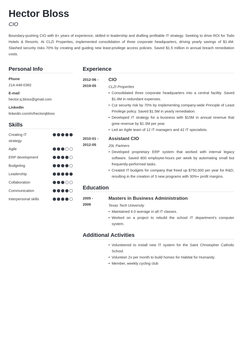 cio resume example template simple