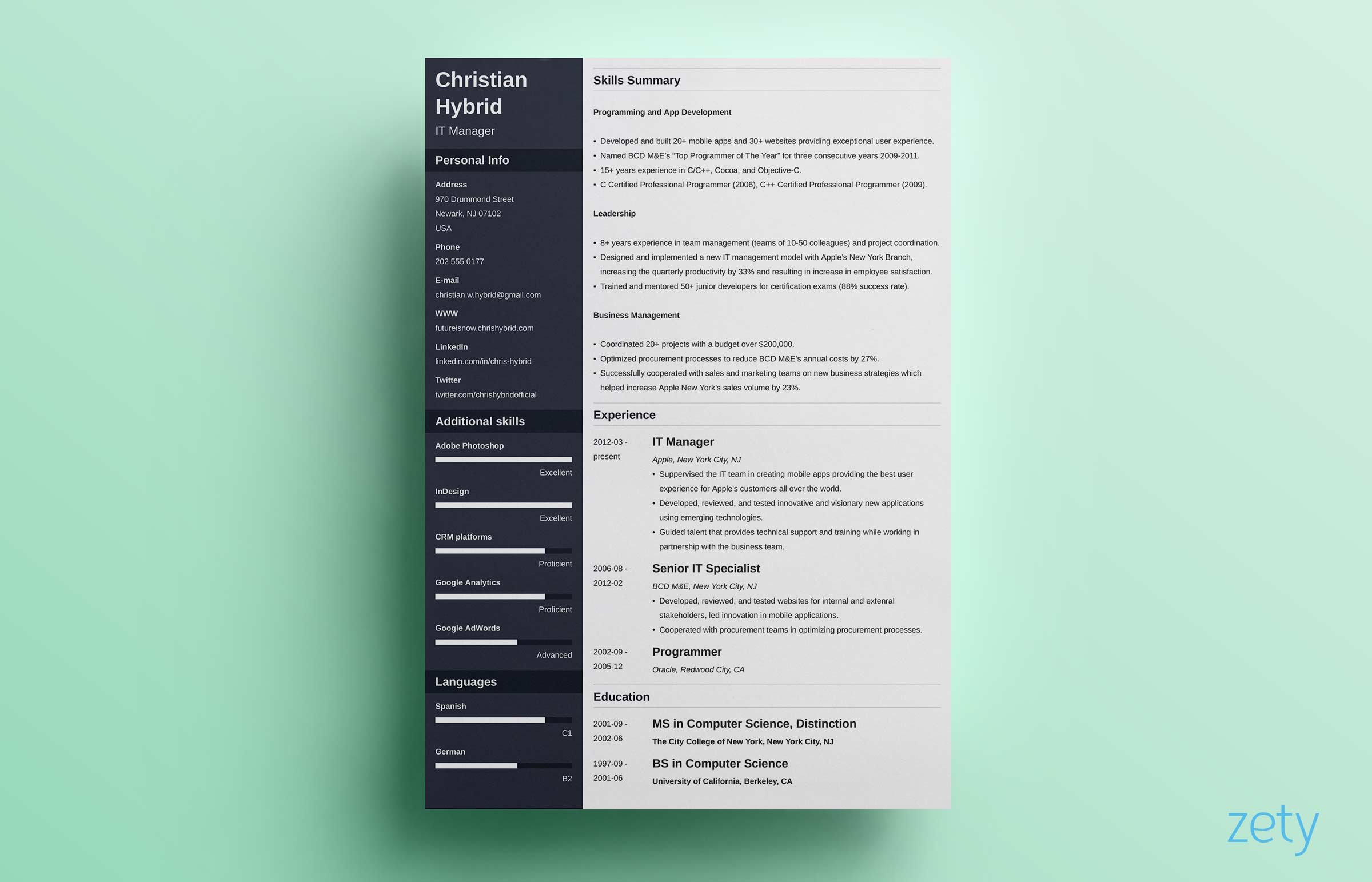Combination resume template 5 examples complete guide altavistaventures Gallery