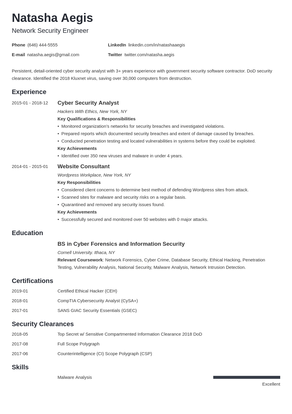 cyber security resume example template minimo
