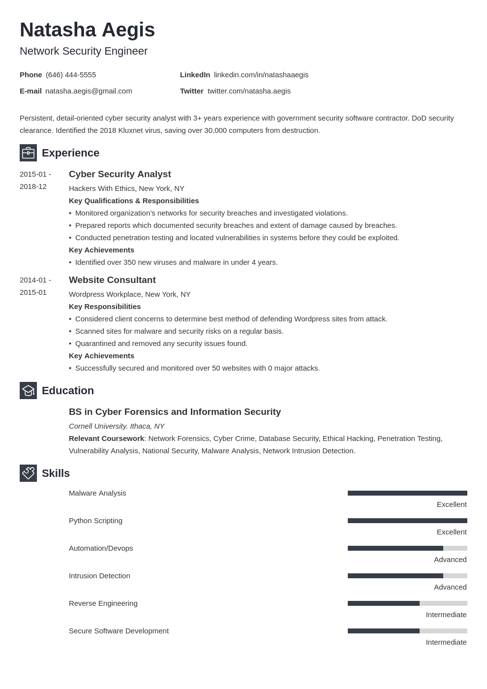 cyber security resume example template newcast