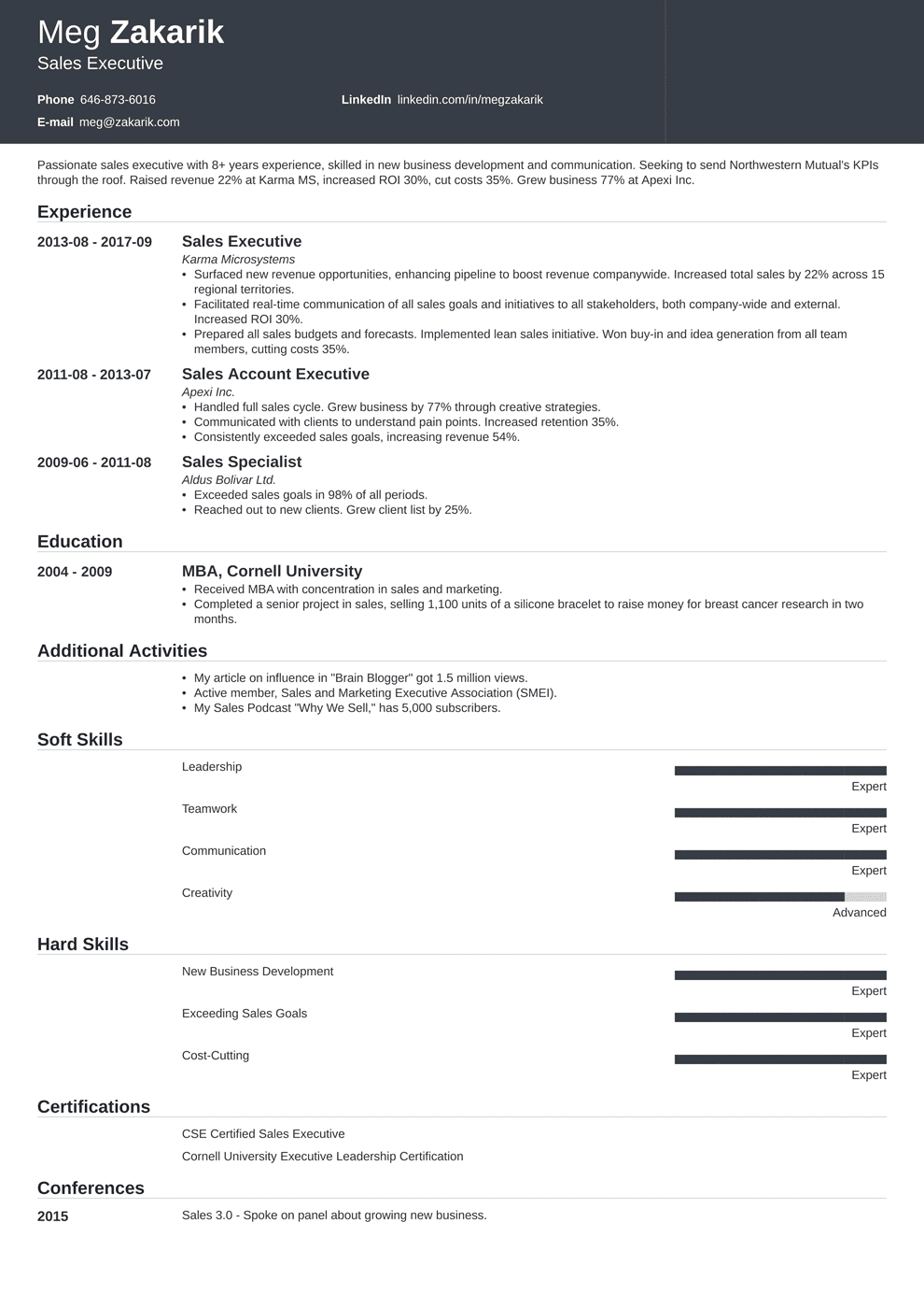 Executive Resume Sample And Complete Guide 20 Examples