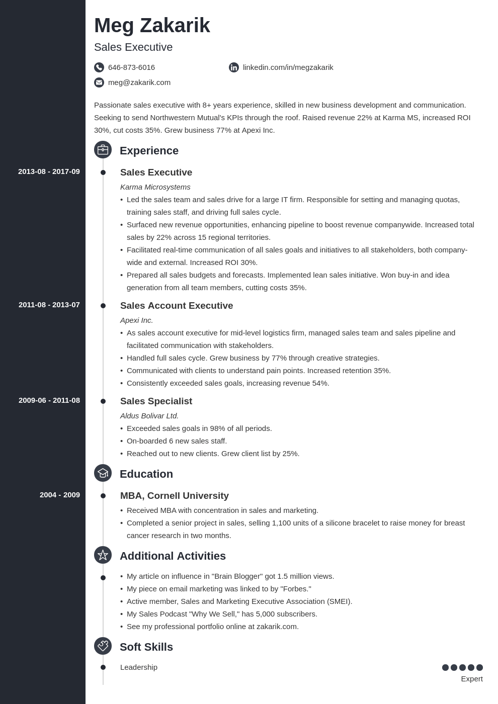 executive resume example template concept