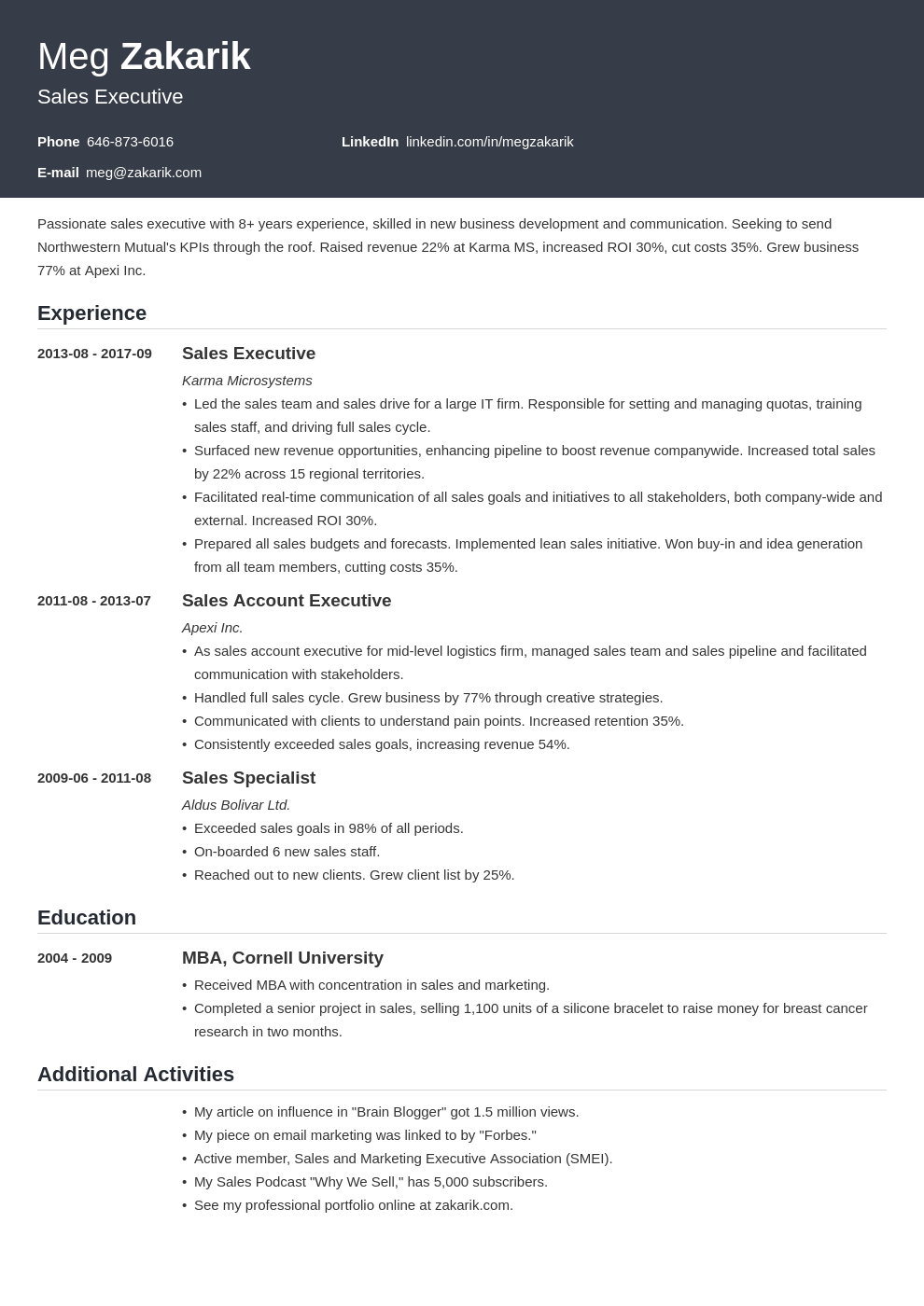 executive resume example template influx