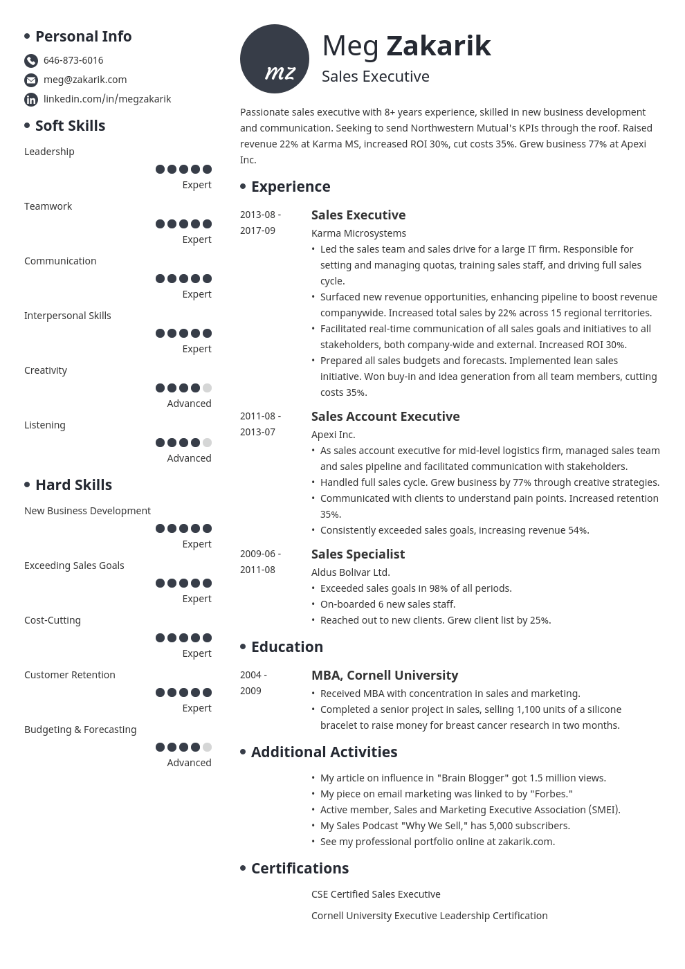 executive resume example template initials