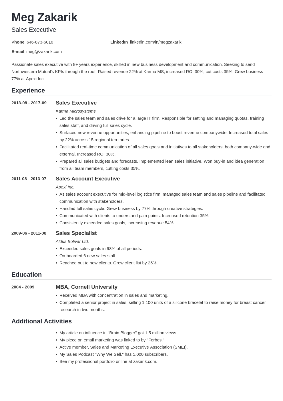executive resume example template nanica