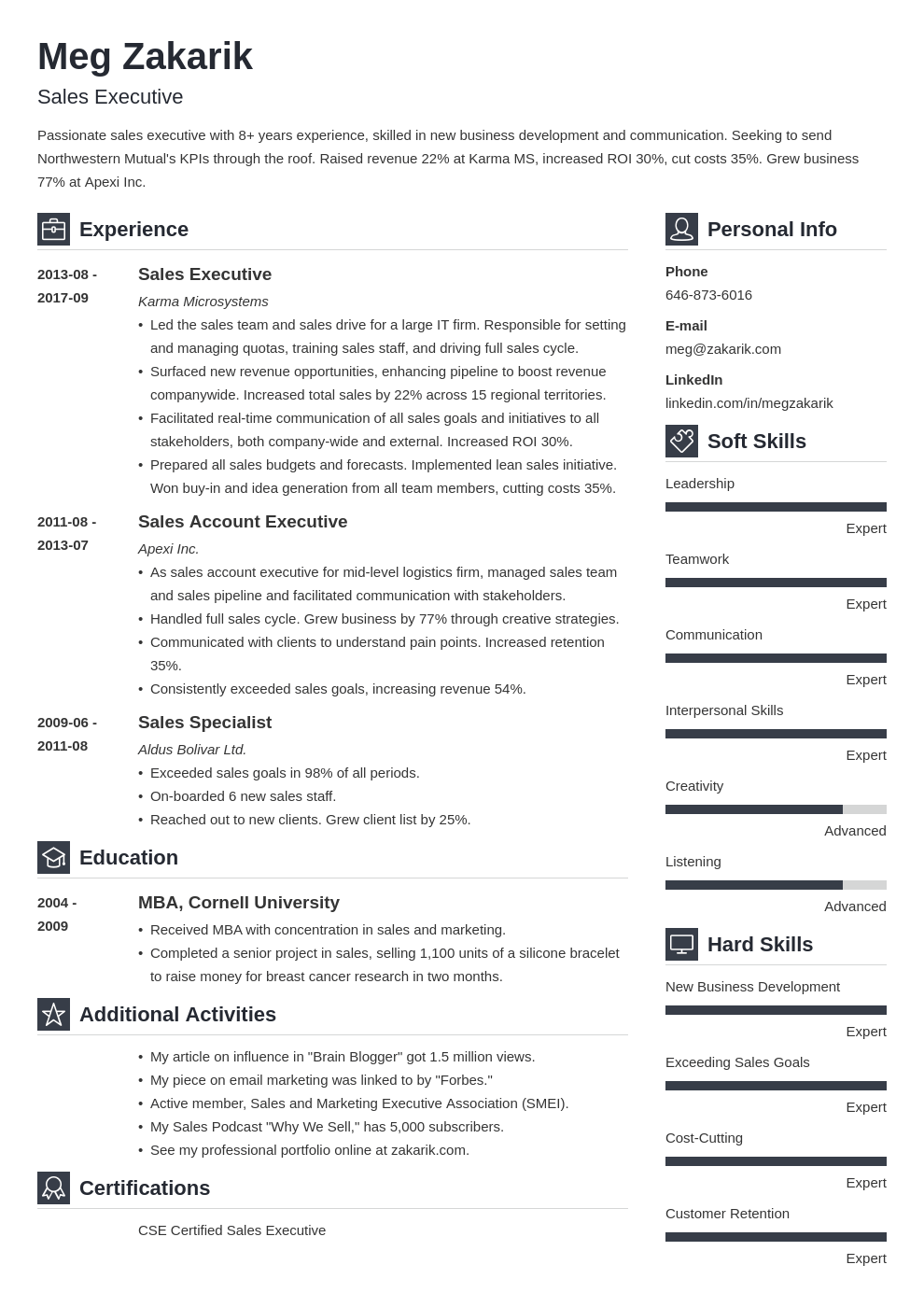 executive resume example template vibes
