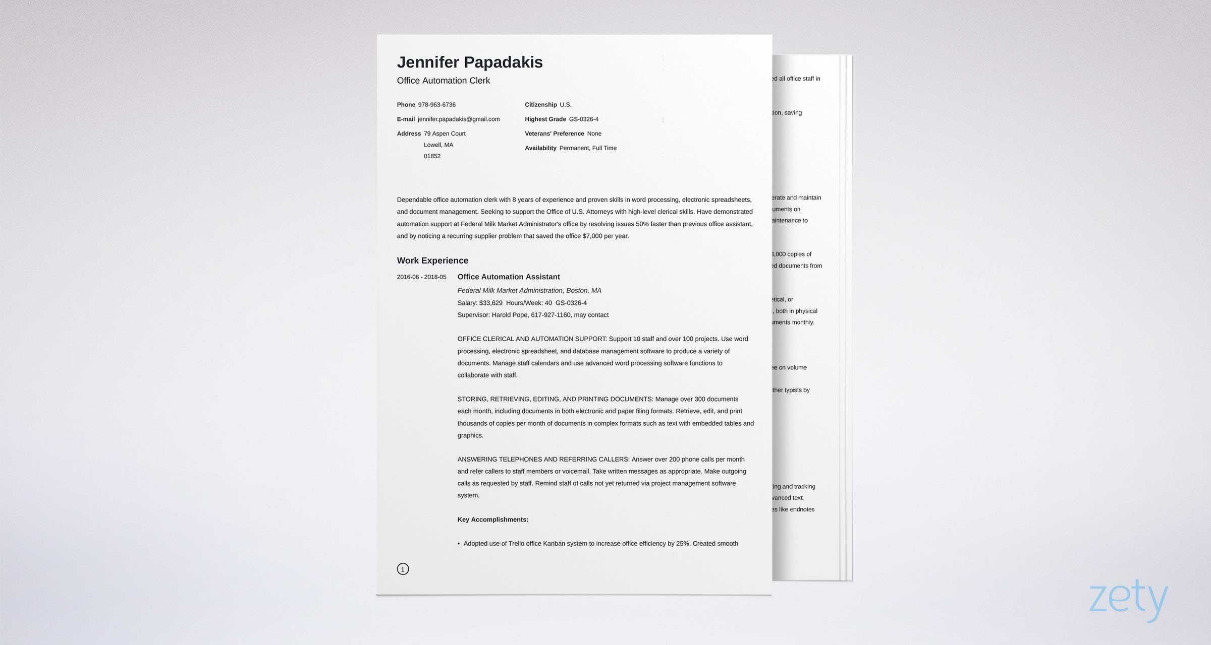 2020 federal resume template  u0026 format  20  examples