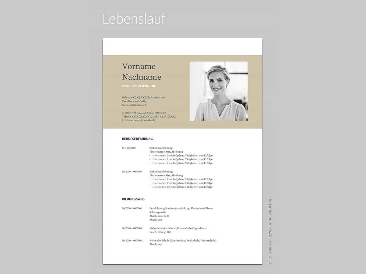 Google Docs Resume Sample With Beige Header  Google Docs Templates Resume