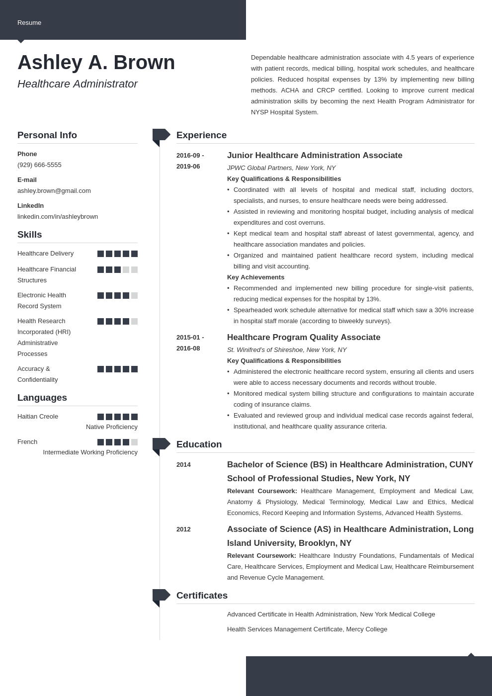healthcare resume example template modern