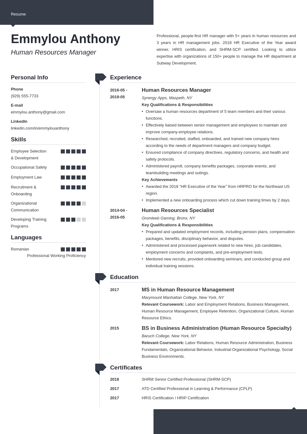 hr manager resume example template modern
