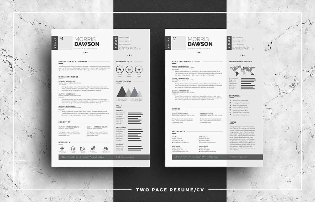 infographic resumes in shades of gray