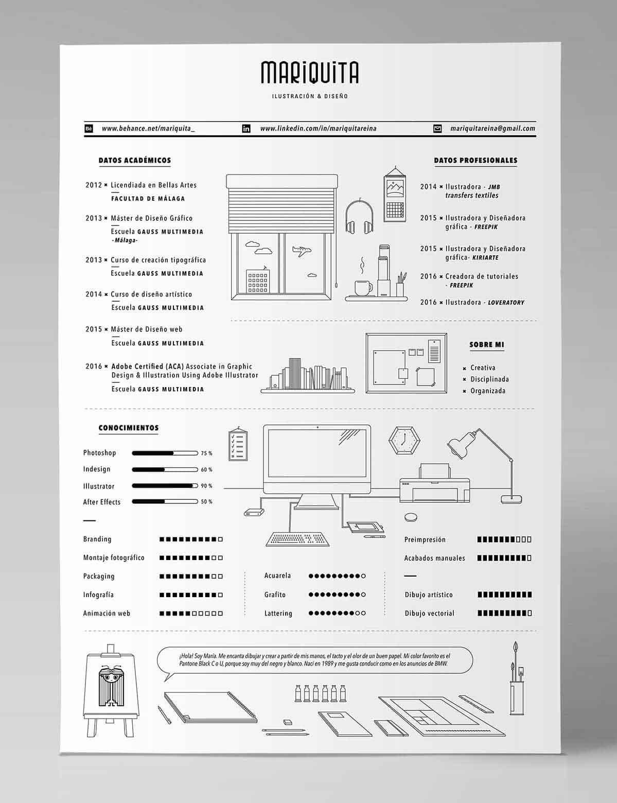 Infographic Visual Resume With Drawings